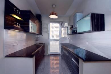 1400 sqft, 3 bhk Apartment in Ahinsha Vatika Shahdara, Delhi at Rs. 1.0500 Cr