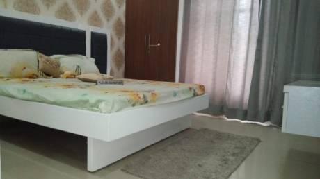 1365 sqft, 2 bhk Apartment in BPTP Princess Park Sector 86, Faridabad at Rs. 13000