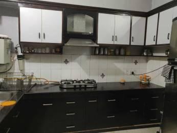 2250 sqft, 3 bhk BuilderFloor in Ansal Sushant Lok I Sector 43, Gurgaon at Rs. 52000