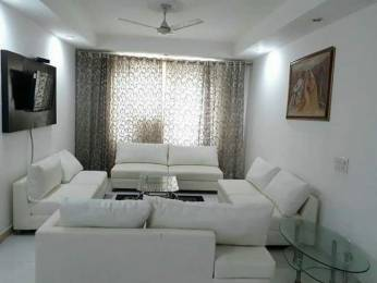 1350 sqft, 3 bhk IndependentHouse in Builder Project Sector 133, Noida at Rs. 71.2500 Lacs