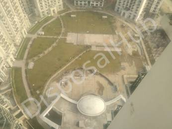 515 sqft, 1 bhk Apartment in Builder Project Sector 168, Noida at Rs. 37.0000 Lacs