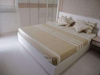 410 sqft, 1 bhk Apartment in Elegant Vaishali Utsav Gandhi Path West, Jaipur at Rs. 12.2500 Lacs