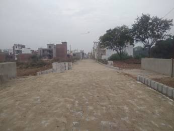 893 sqft, Plot in Builder Project Sunny Enclave, Chandigarh at Rs. 16.0000 Lacs