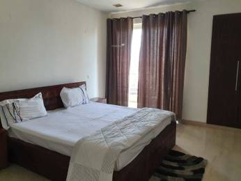 1900 sqft, 4 bhk Apartment in Ansal Maple Heights Sector 43, Gurgaon at Rs. 52000