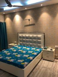 1800 sqft, 2 bhk Apartment in Builder Project Greater kailash 1, Delhi at Rs. 60000