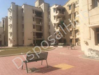 1329 sqft, 3 bhk Apartment in Builder Project Phi III, Greater Noida at Rs. 39.0000 Lacs